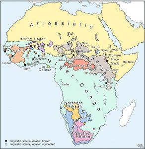 Taalfamilies van Afrika (© Prof. G.J. Dimmendaal)
